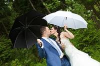 Классическая свадьба (от 4 часов)
